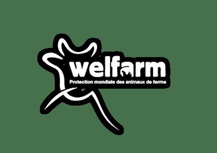 Welfarm, protection mondiale des animaux de ferme